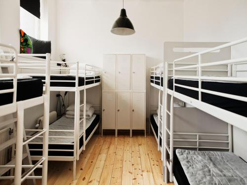 City Backpackers Hostel photo 11