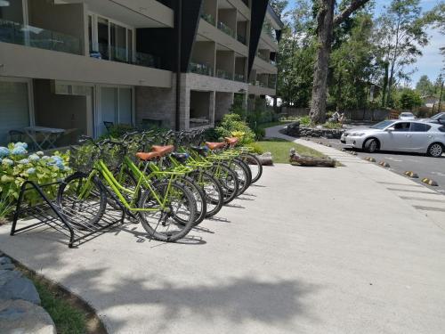 Alta Vista Pucon Centro - Apartment - Pucón