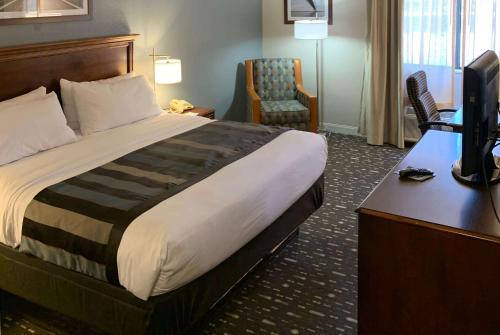 Wingate by Wyndham Brighton - Hotel - Mount Brighton
