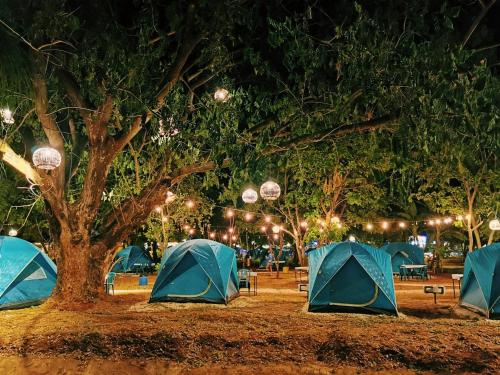 3199 Mountain Camp 3199 Mountain Camp