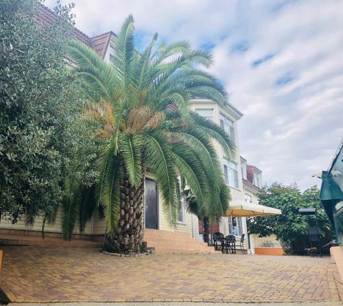 Arabika Apart Hotel