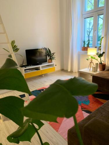 Hotel-overnachting met je hond in BluM Apartment - Bratislava - Stare Mesto
