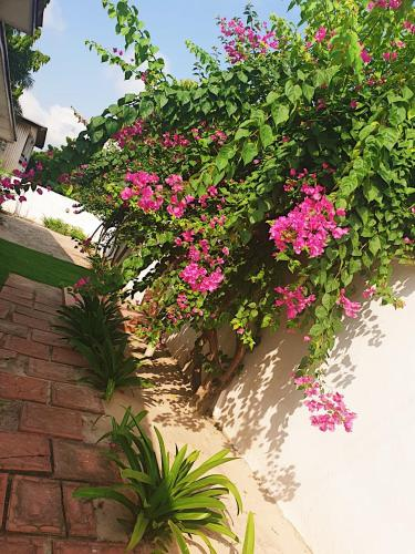 Rose Garden In Accra Ghana Reviews Prices Planet Of Hotels