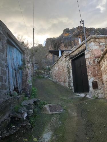 Androniki House - Photo 4 of 14
