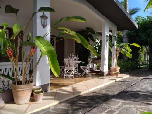 White Coconut Residence,