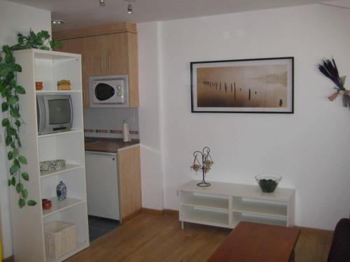 Apartamento en pistas de esquí - Apartment - Candanchú