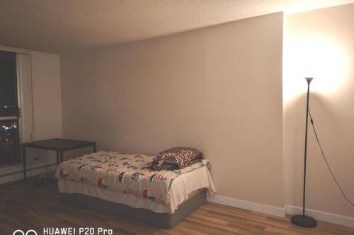 Edmonton NW 82 Ave 1 Bdr Apartment - Edmonton, AB