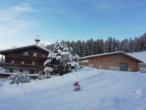 Ferienwohnung Angererhof - Apartment - Reith im Alpbachtal