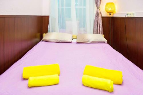 Hostel Astra Na Basmannoy