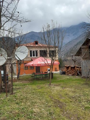 Dandalo - Accommodation - Batumi