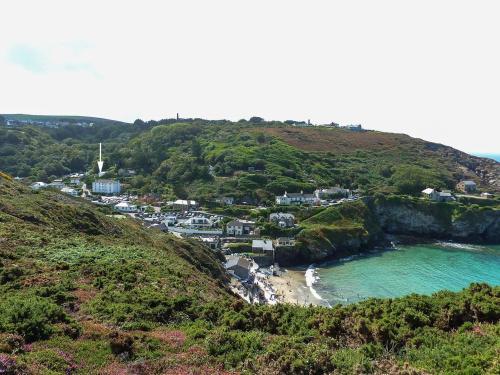 Sea Thrift, St Agnes, Cornwall
