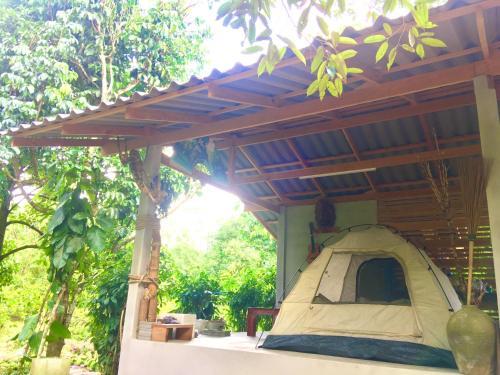 PaSu Garden PaSu Garden