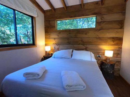 Lodge Las Trancas, Ñuble