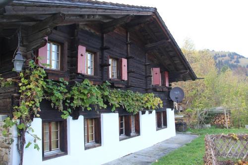 Chalet Bergwelt - Frutigen