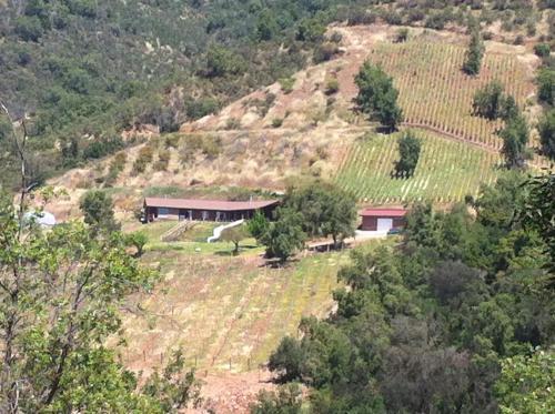 Cabaña en medio de una viña - Accommodation - Melipilla