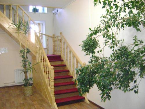Hotel Galchonok At Ulitsa Alexeya Tolstogo