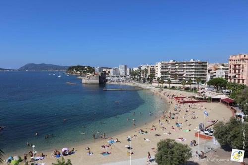 Bel appartement T3 Mourillon à 5 min des Plages - vue mer - Location saisonnière - Toulon