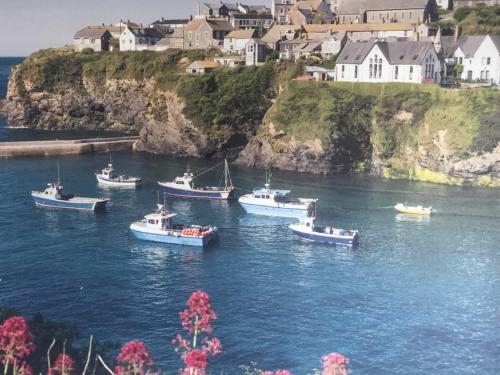 Bay House - Lundy. Port Isaac Dog Friendly Apartment With Sea Views, Port Isaac, Cornwall