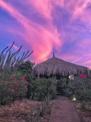 Foto - Mondi Lodge