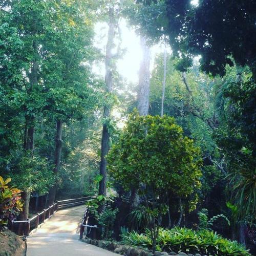 ReunKruThai Resort ReunKruThai Resort