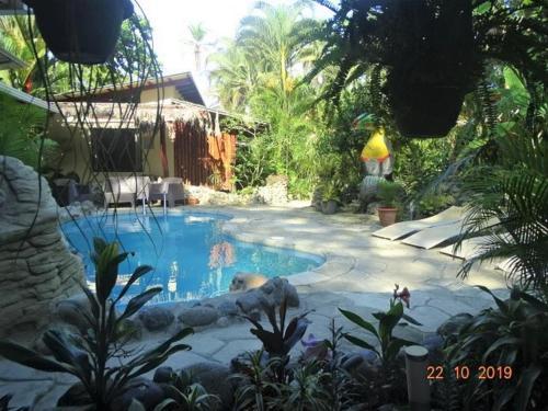 . Hotel Caribbean Coconut