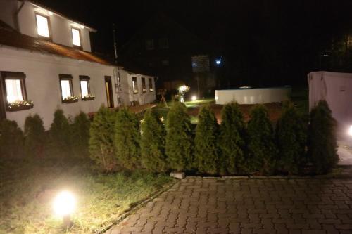 Ferienwohnung Haus Zeier - Apartment - Hahnenklee-Bockswiese