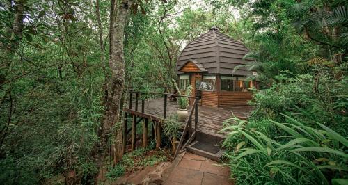 Serenity Mountain And Forest Lodge, Malelane, Mpumalanga