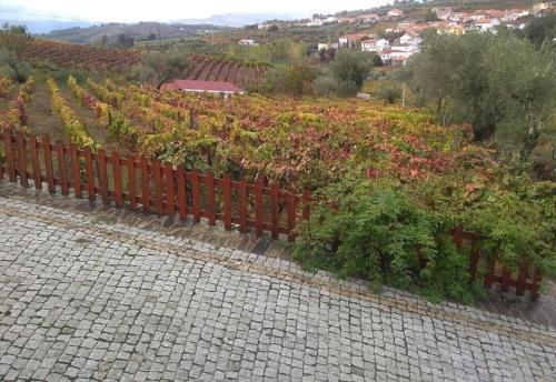 Casa do Poco - Douro, Peso da Régua