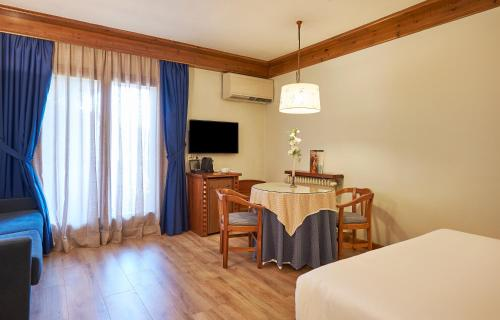 Superior Double or Twin Room - single occupancy Hotel Grèvol Spa 14