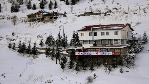 Snow Patrol Lodge (B&B)