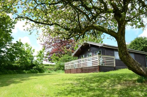 Avallon Lodges, Boyton, Cornwall