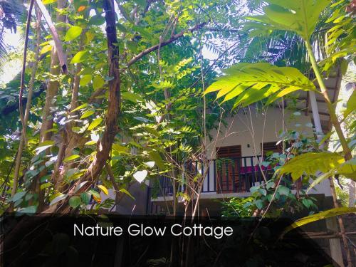 Nature Glow Cottage