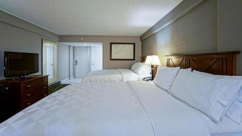 Foto - Holiday Inn At the Campus