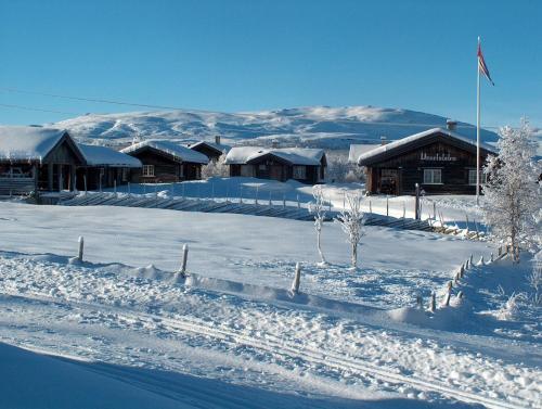 Vasetstølen Hytter og servering - Accommodation - Brujordet