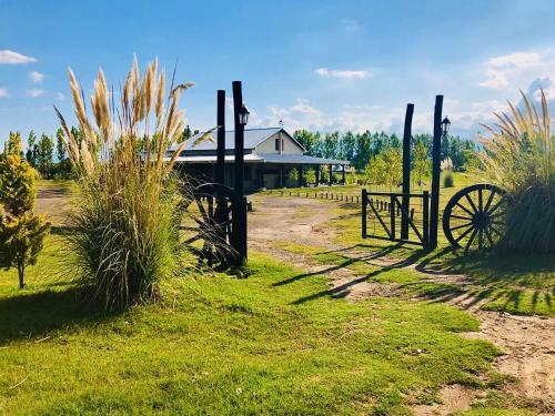 El Madejo - del Valle de Uco