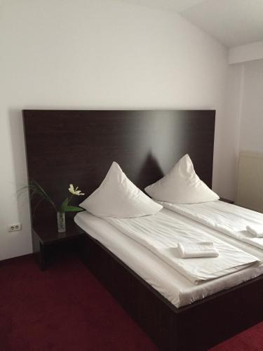 Arta Hotel, Ghiroda
