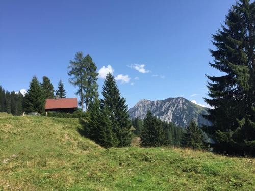 Almhütte in den oberösterreichischen Alpen - Spital am Pyhrn