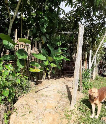 Hotel Casa do Xingu