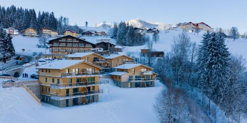 . Panorama Lodge Schladming