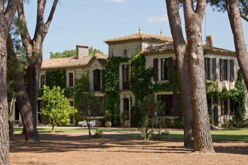 Domaine de la JASSO, au pied de la Cité Médiévale - Location saisonnière - Carcassonne