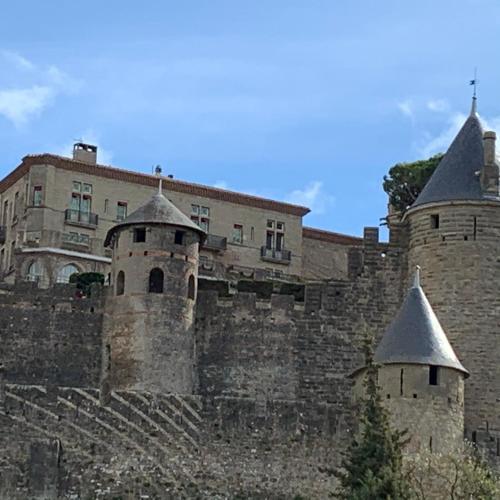 Jolie Vue Cité, aux pieds des remparts - Location saisonnière - Carcassonne
