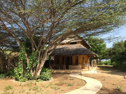 Mangrove House