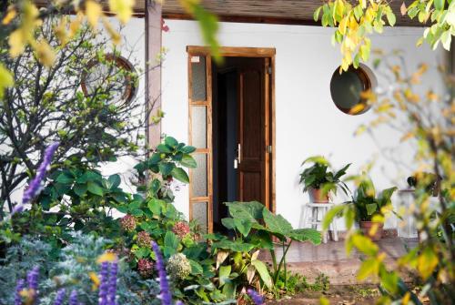 Casa Pando - Accommodation - Santa Cruz