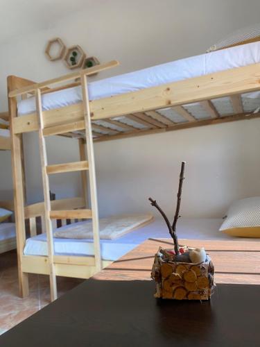 The Hood Hostel