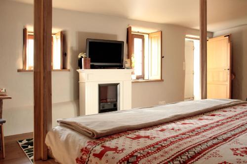 L'Alcôve d'Amédée V - Apartment - Yvoire