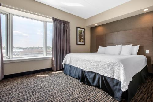 . Clarion Hotel & Suites