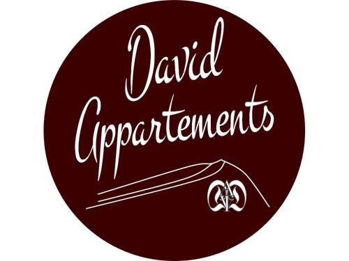 David Appartments - Apartment - Mauterndorf