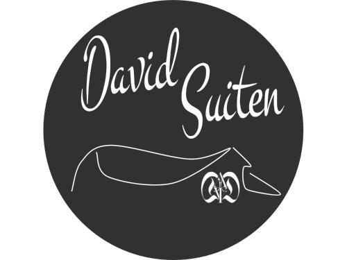 DAVID SUITEN - Apartment - Mauterndorf