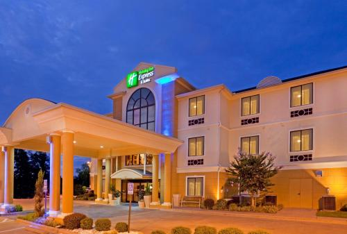 . Holiday Inn Express Hotel & Suites Mount Pleasant