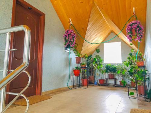 Guest House Darina in Vostryakovo, Domodedovskiy rayon
